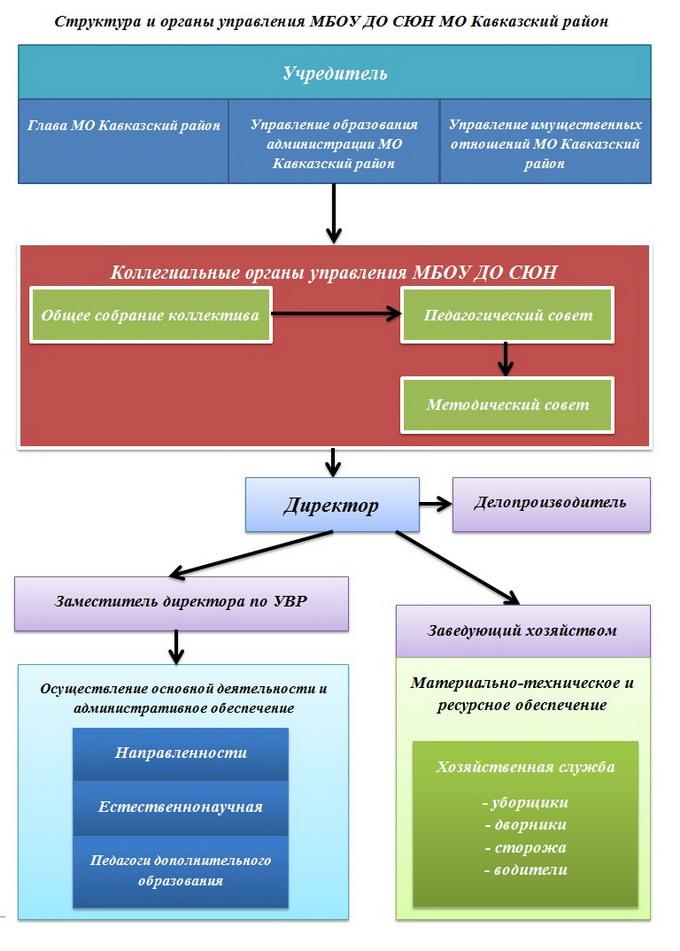 структура и органы управления_новый размер