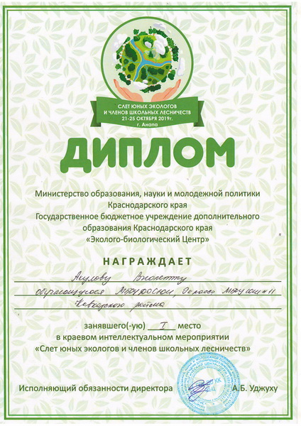 Диплом Акулова_новый размер