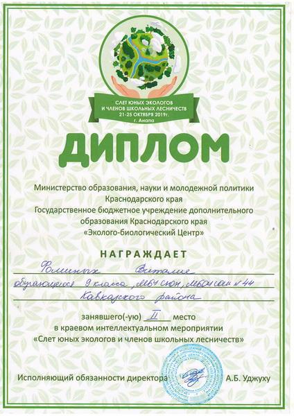 Диплом Фоминых_новый размер